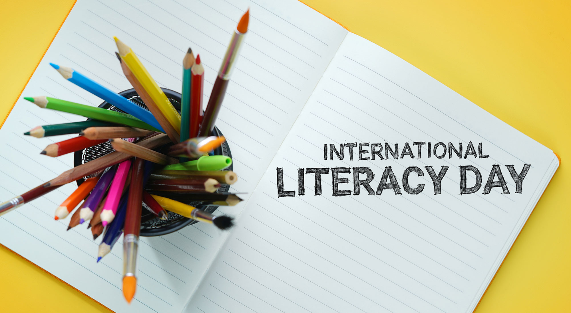 international-literacy-day-national-read-a-book-day